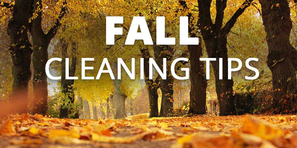 Fall Cleaning Tips for Savannah Homes